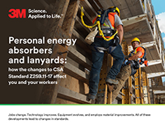 3M Personal Energy Absorbers and Lanyards