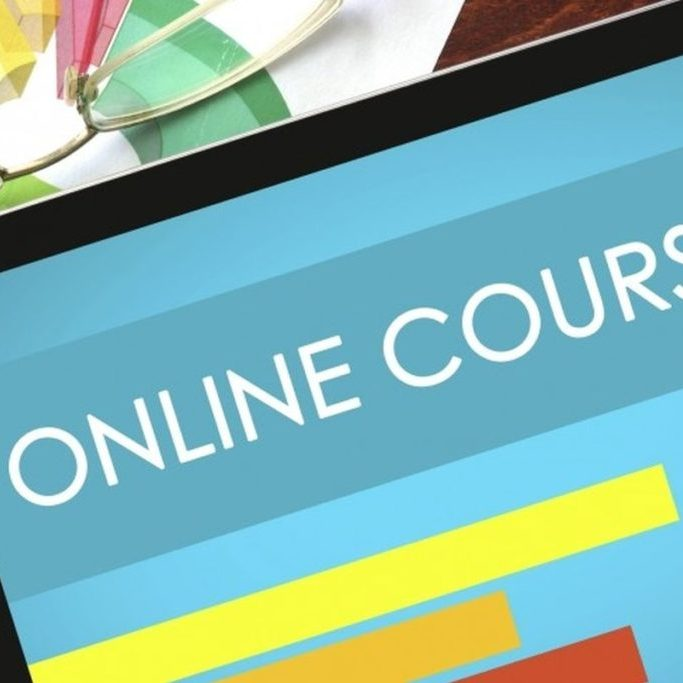 pandemics: slowing the spread online course